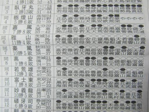20111128・大相撲09