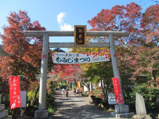 20111123・東郷1-14