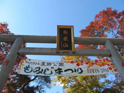 20111123・東郷1-15