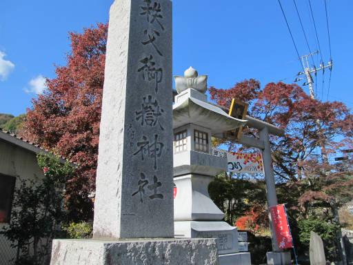 20111123・東郷1-13
