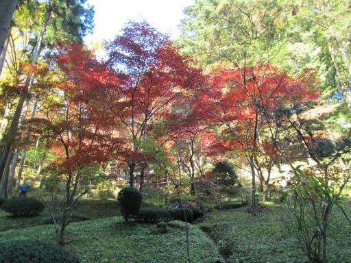 20111123・東郷1-22