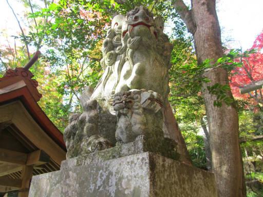 20111123・東郷2-06