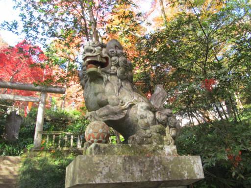 20111123・東郷2-05