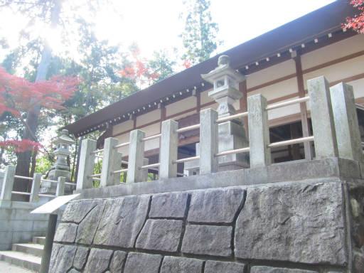 20111123・東郷2-18