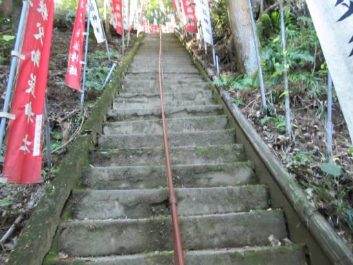 20111123・東郷2-14