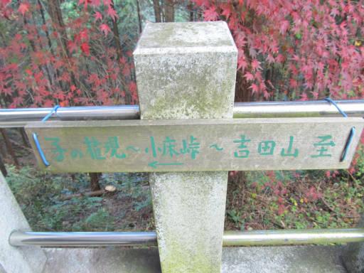 20111123・東郷2-21