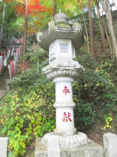 20111123・東郷2-24