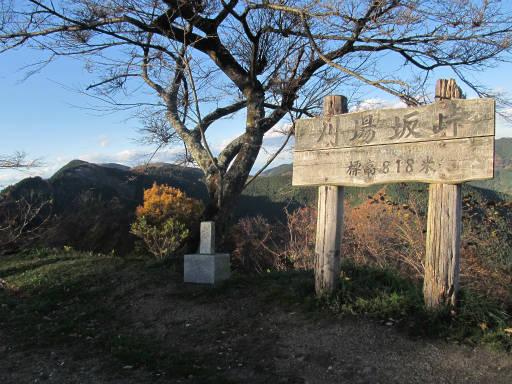 20111123・奥武蔵18