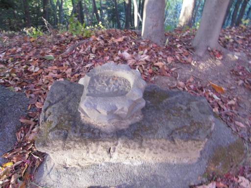 20111123・奥武蔵26