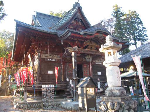 20111123・奥武蔵31
