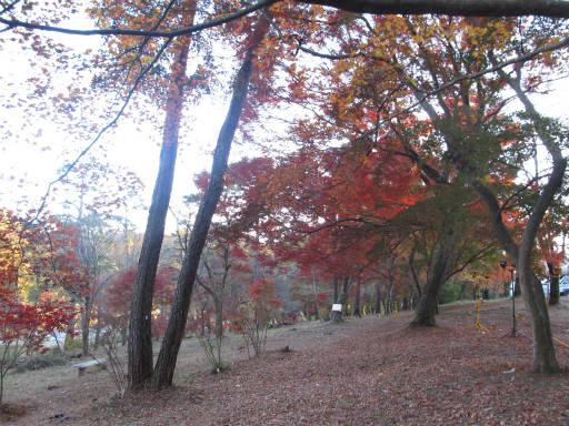 20111123・長瀞1-03