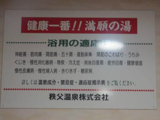 20111123・長瀞2-17