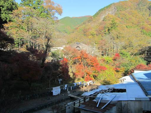 20111126・払沢の滝04