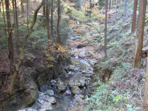 20111126・払沢の滝12