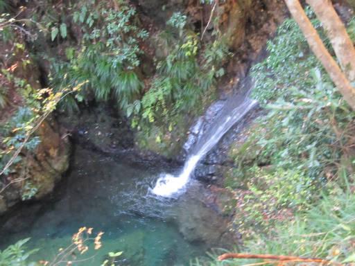 20111126・払沢の滝11