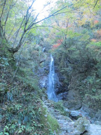 20111126・払沢の滝17