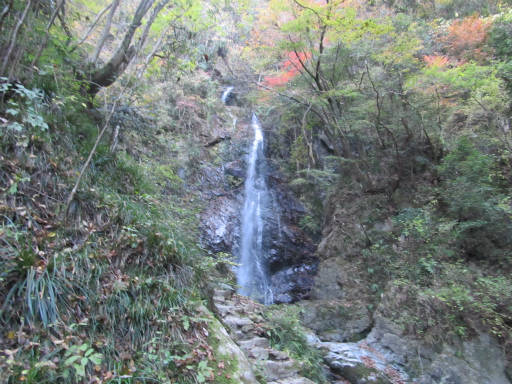 20111126・払沢の滝13