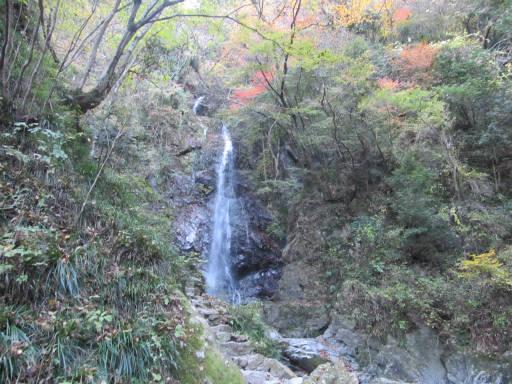 20111126・払沢の滝18