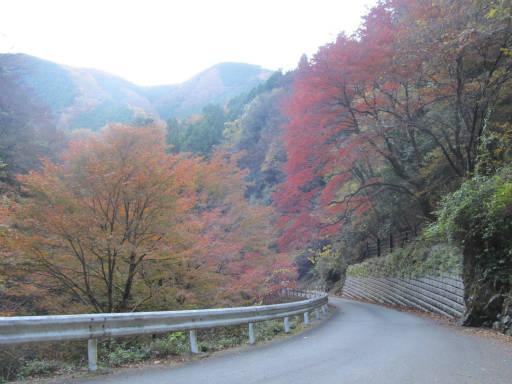 20111126・神戸岩01