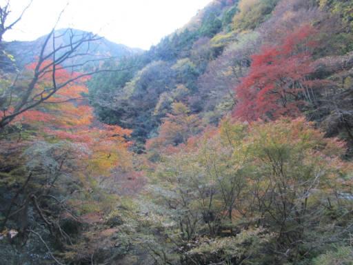 20111126・神戸岩10