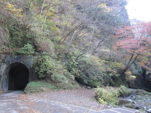 20111126・神戸岩09