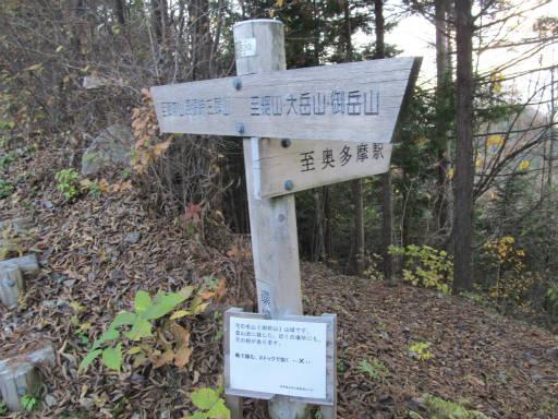 20111126・神戸岩18