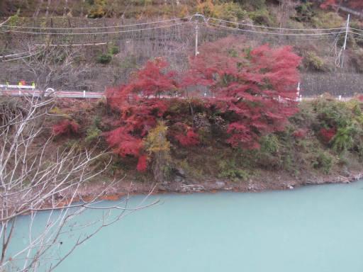 20111126・神戸岩22