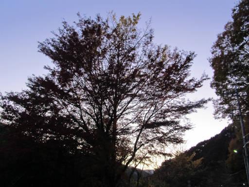 20111126・神戸岩31