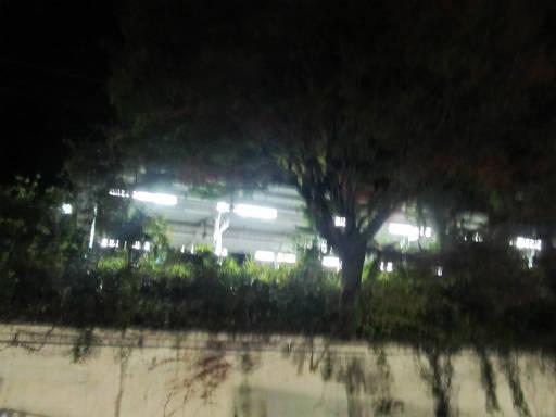 20111126・御嶽07