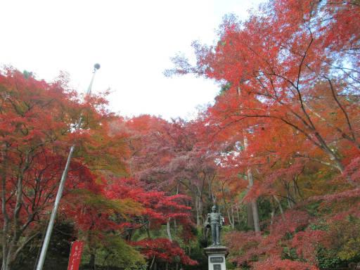20111123・空04・東郷公園