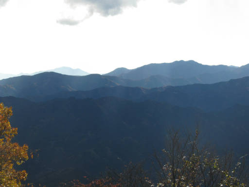 20111123・奥武蔵14~15