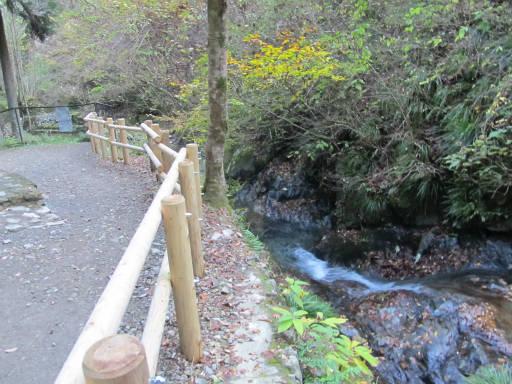 20111126・払沢の滝18~19