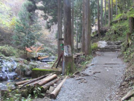 20111126・払沢の滝12~13