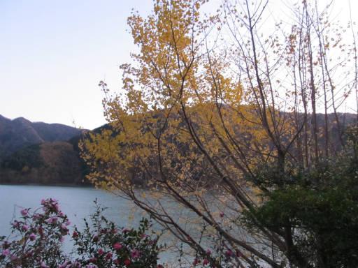 20111126・神戸岩28~29