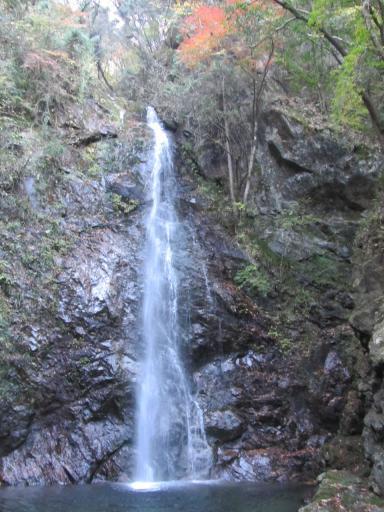 20111126・紅葉09・払沢の滝