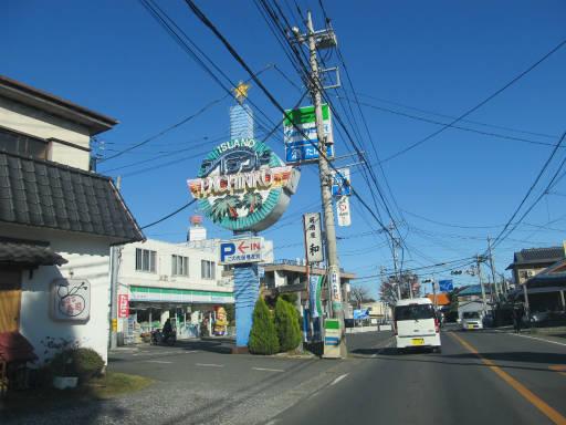 20111204・自然観察会2-24
