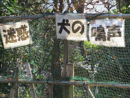 20111218・中野めぐり2-36