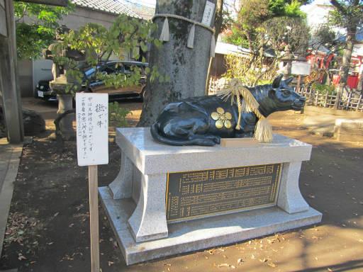 20111218・中野めぐり3-08