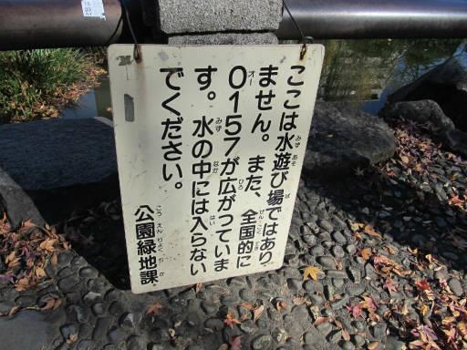 20111218・中野めぐり3-18