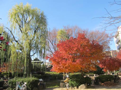 20111218・中野めぐり3-22
