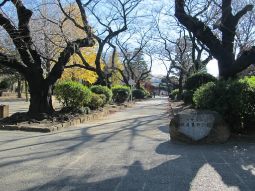 20111218・中野めぐり3-27