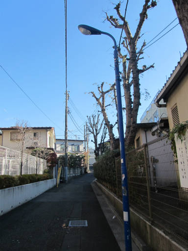 20111218・中野めぐり空03・六中跡