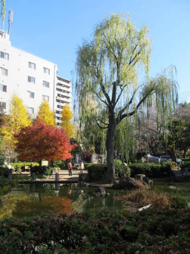 20111218・中野めぐり空08・ヒョウタン池