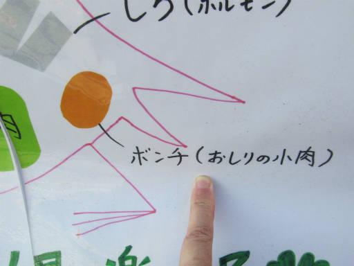 20111218・中野めぐり7-17