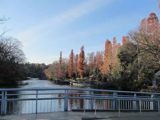 20111218・武蔵野めぐり2-24