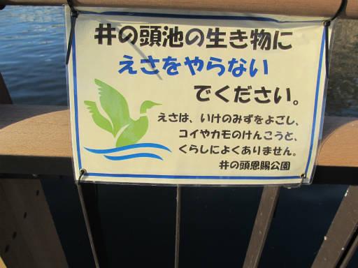 20111218・武蔵野めぐり2-31