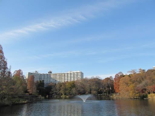 20111218・中野めぐり空14・井の頭公園