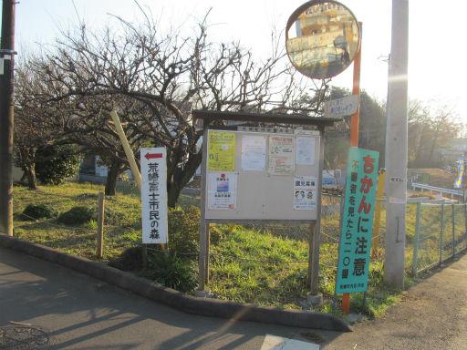 20111229・荒幡富士05
