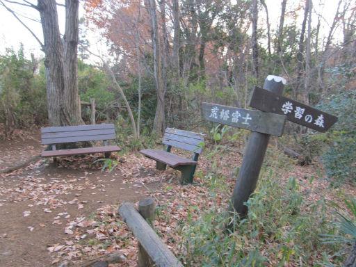 20111229・荒幡富士11