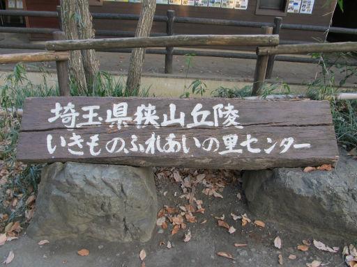 20111229・荒幡富士08